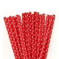 Red Mini Spots Paper Straws